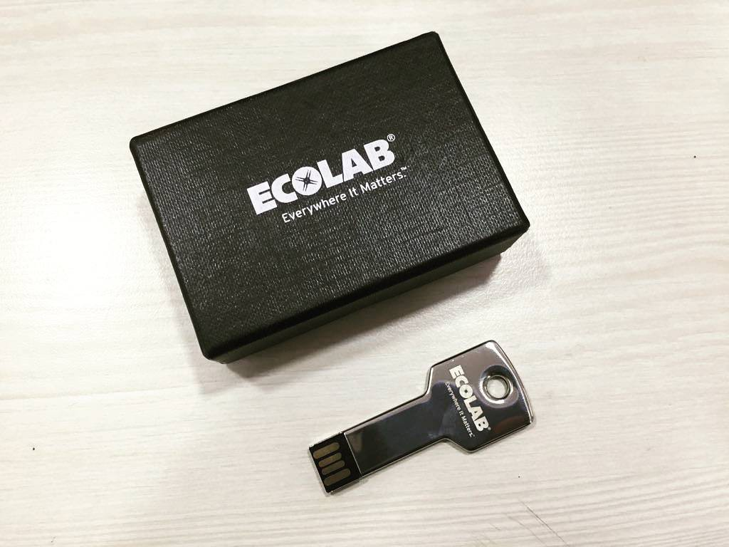 Customized Key Shape 8 GB Pen Drive for Ecolab