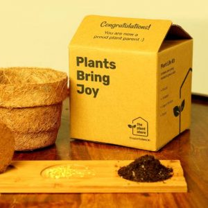 Eco-friendly Plantable gifts