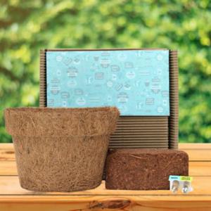plantable grow kit large