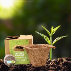 plantable grow kit small